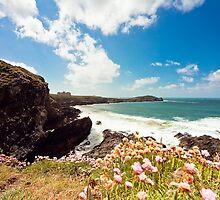 Newquay Towan Headland Cornwall by ilikepetedotcom
