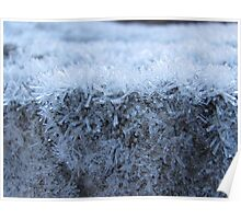 Granite Lamington Poster