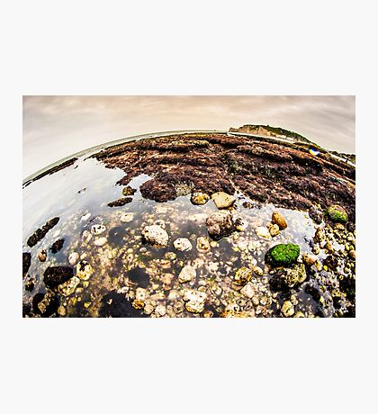The World of Etretat Photographic Print