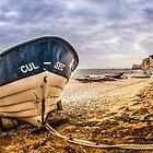 Cul-Sec Boat by FelipeLodi