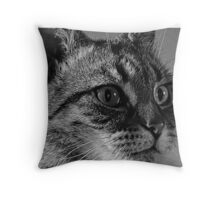 Smokey in Mono. Throw Pillow