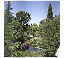 Duck Pond, Botanical Gardens Poster