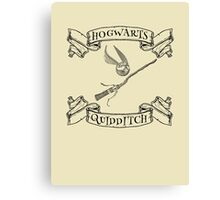 Hogwarts Quidditch with Snitch and Quidditch Broom Canvas Print