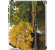 Salmon Ponds iPad Case iPad Case/Skin