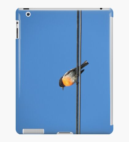 Red Robin iPad Case iPad Case/Skin