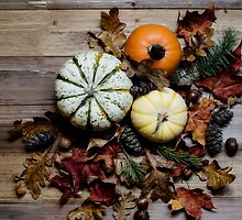 Punkins by Rebecca Cozart