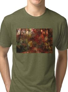 Autumn Abstract Tri-blend T-Shirt