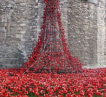 A Cascade Of Poppies At The Tower Of London by InterestingImag