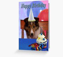 Birthday Shetland Sheepdog Greeting Card