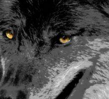 Alpha Male Wolf Sticker