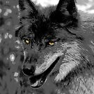 Alpha Male Wolf by NaturePrints