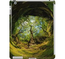 Ness Glen, Mystical Irish Wood iPad Case/Skin