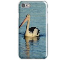 Townsville Pelican iPhone Case/Skin