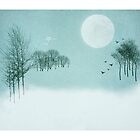 A Winters Tale by M.S. Photography & Art