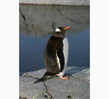 Gentoo Penguin  Unisex T-Shirt
