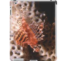 Dwarf Lionfish, Sydney Harbour iPad Case/Skin
