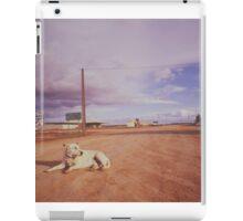 Australian Outback dog sitting road Analogue iPad Case/Skin