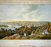 Vintage Pictorial Map of Georgetown (1855) by BravuraMedia