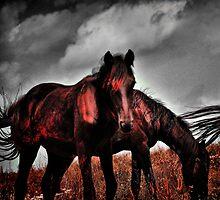 Appalachians by Ann Eldridge