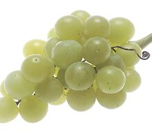 White Grapes  by BravuraMedia