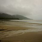 Cape Tribulation by D-GaP