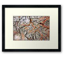 Rock Art Framed Print