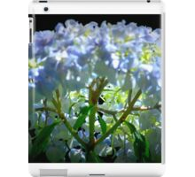 Backlit hydrangea. iPad Case/Skin