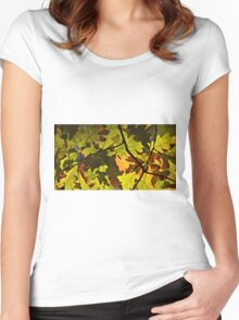 The Autumn Oak 2 Women's Fitted Scoop T-Shirt