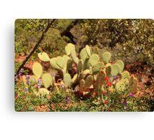 Desert Flowers, Utah Canvas Print