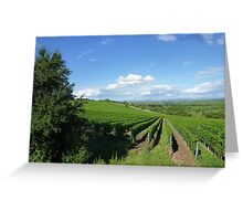 Vineyards ain germany Greeting Card