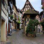 Eguisheim village by annalisa bianchetti