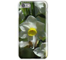 A Bee in Jonquils iPhone Case/Skin