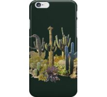 Giant Saguaros of the Sonoran Desert iPhone Case/Skin