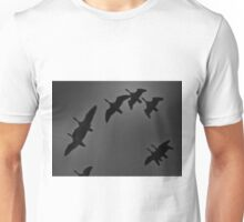 Wings Overhead Unisex T-Shirt
