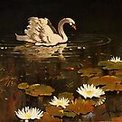 lonely swan by dusanvukovic