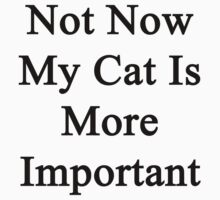 Not Now My Cat Is More Important  by supernova23