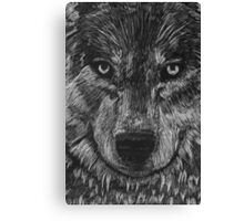 Portrait: Lone Wolf Canvas Print