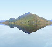 Melaleuca Reflections by Carole-Anne