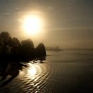 Early Mist on the Danube ( 1 ) by Larry Lingard-Davis