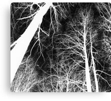 Branches lightning black and white - Ramas 2b blanco y negro Canvas Print