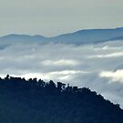 Above the Clouds by Tibby Steedly