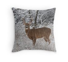 White-tailed deer buck in snow Throw Pillow