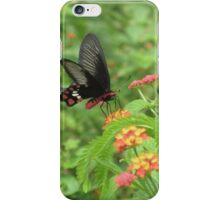 The red beauty - Common Rose iPhone Case/Skin