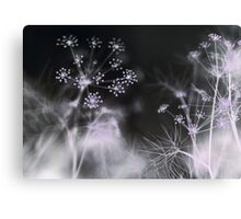 Silent Fireworks Canvas Print