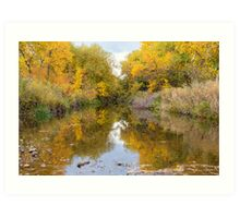 Fly Fishing Stream Reflections Art Print