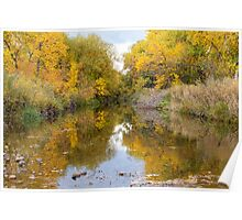 Fly Fishing Stream Reflections Poster