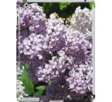 Lilac Splendor iPad Case/Skin
