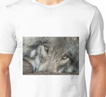 Windows of the Soul Unisex T-Shirt