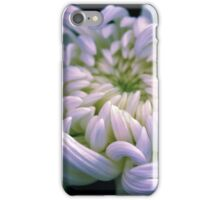Chrysanthemum Dawn iPhone Case/Skin