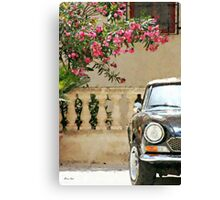 Bougainvillea And Sports Car Canvas Print